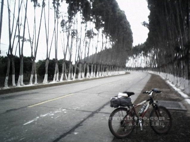 南昆山美丽的公路