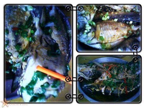 年饭中的两道菜式,都是蒸鱼^-^ 红海湾