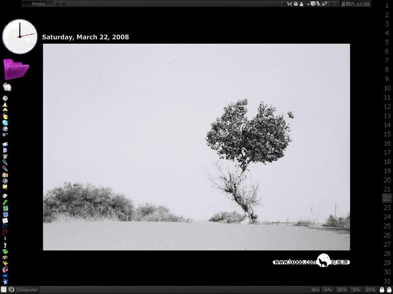 My Desktop: Hu Poplar