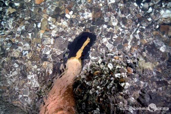 我的腿其实没那么粗,只是海水把它放大了