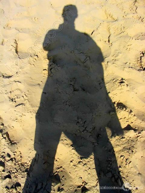 沙湖边缘摩凝的影子