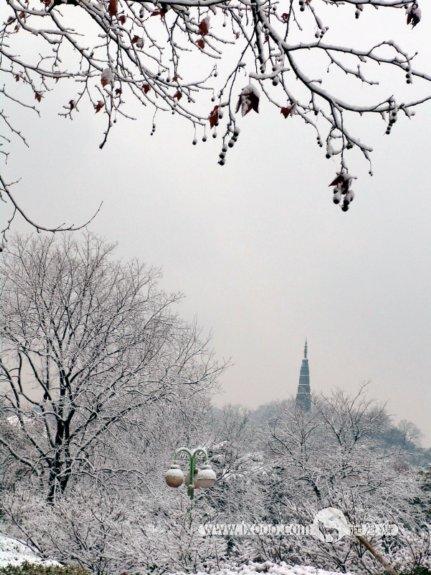 杭州西湖雪景·塔