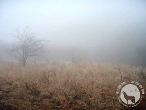 雨雾中的清凉峰