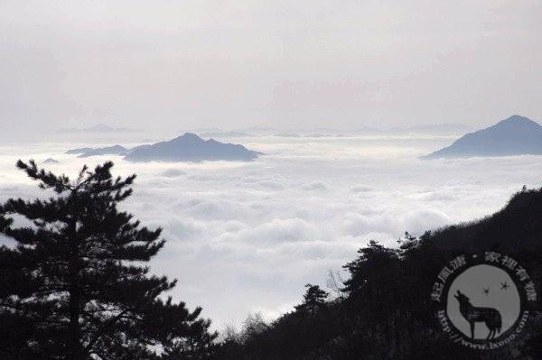 百丈岭洁白的云海