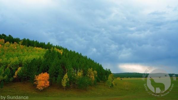 雨后的山林