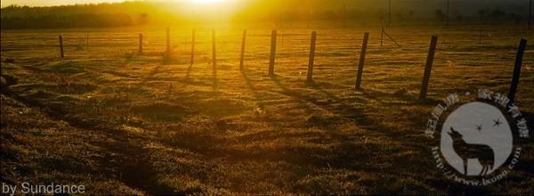 秋日的草原