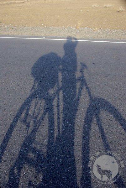 华士邦的长影子