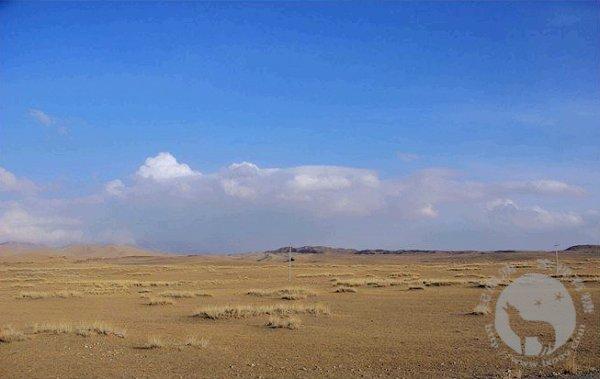 远处的雪山和沙漠
