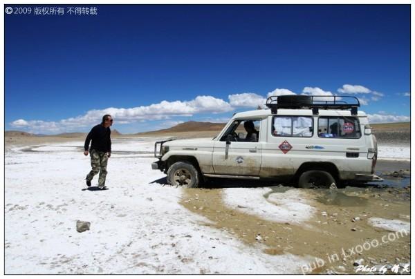 半个轮子已经陷入盐碱地里·西藏阿里