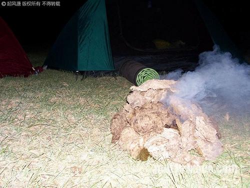 PM22H28M,我们用干牛粪生起了篝火@巴里坤湖畔