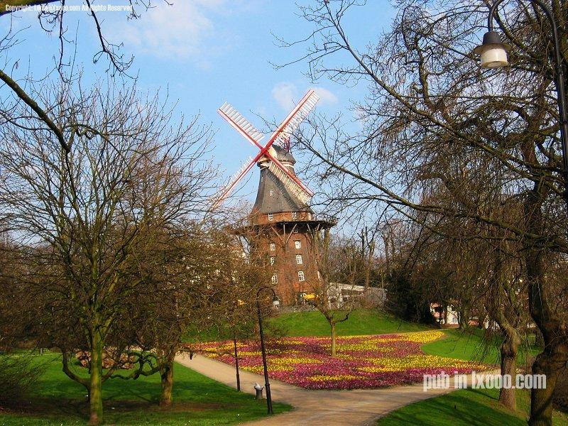 艳丽的欧式田园风光 风车
