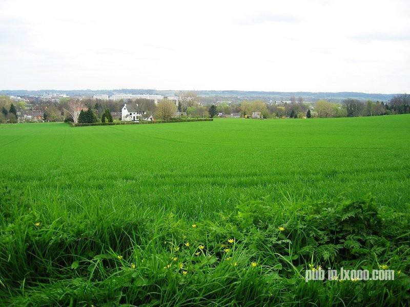 荷兰 马斯特里赫特 田园 照片