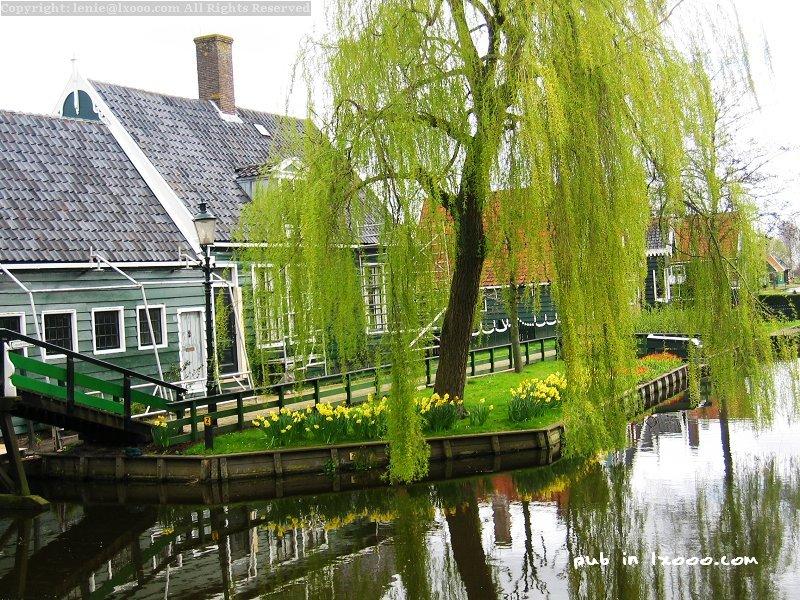 赞斯堡 赞斯安斯 运河 房子