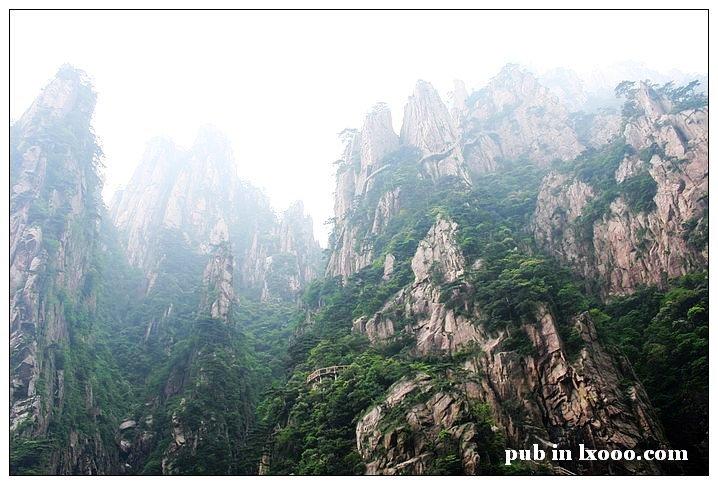 黄山 石林