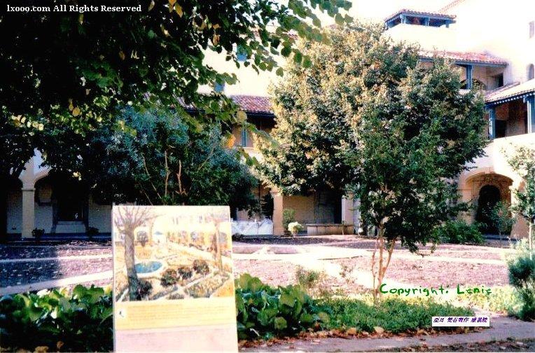梵高(梵谷)的疗养院的庭院