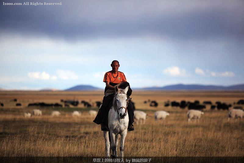 桑科草原上骑马的牧人