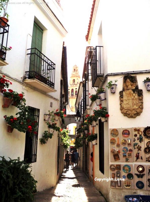 西班牙科尔多瓦犹太区的百花巷