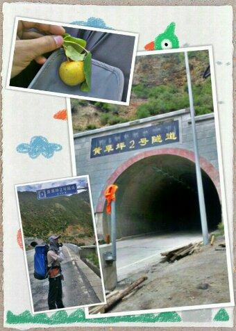 在黄草坪2号隧道前留影的摩凝(M.Chan)以及道班工人请吃的小山梨