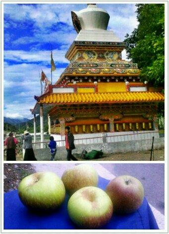 巴塘县党巴乡的佛塔和藏族阿妈送的小苹果
